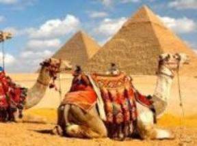 Rules to plan Egypt tours