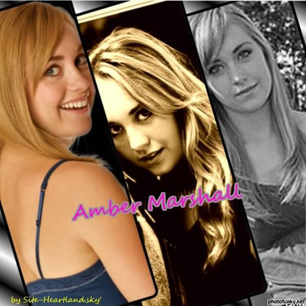 Biographies d'Amy et Ty, mes préférés ♥