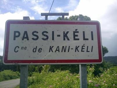 Passi Kelly  (2011)
