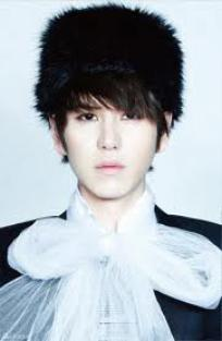 OS SJ. 8 SUPER JUNIOR : GAME OVER KYUHYUN !!!