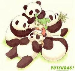 Yotsuba (: