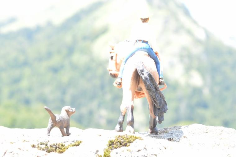 Après-midi en montagne 2015 (2)