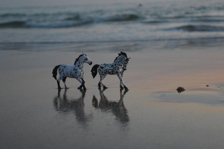 Les pieds dans le sable fin