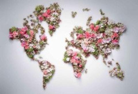 coucou le monde