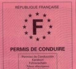 Sarkozy et Hollande veulent réformer le permis