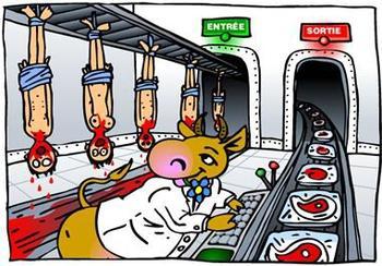 Le Martyre des bêtes d'abbatoir...