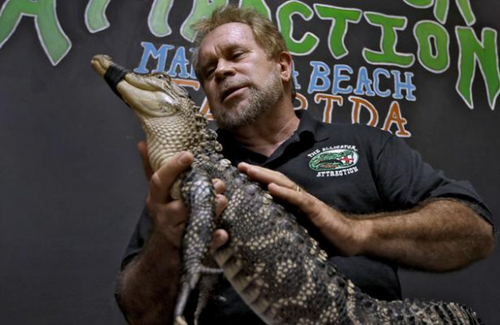 Vous n'avez pas d'idée cadeau pour votre enfant? Louez un alligator...
