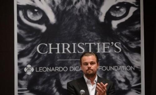 Léornado DiCaprio engagé pour l'environnement et les espèces menacées! :)