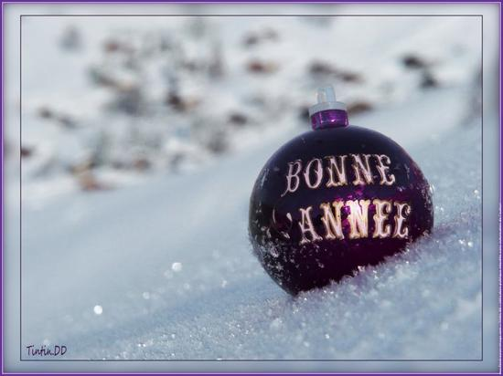 1er janvier 2013 / Bonne Année à vous mes Amis(es)