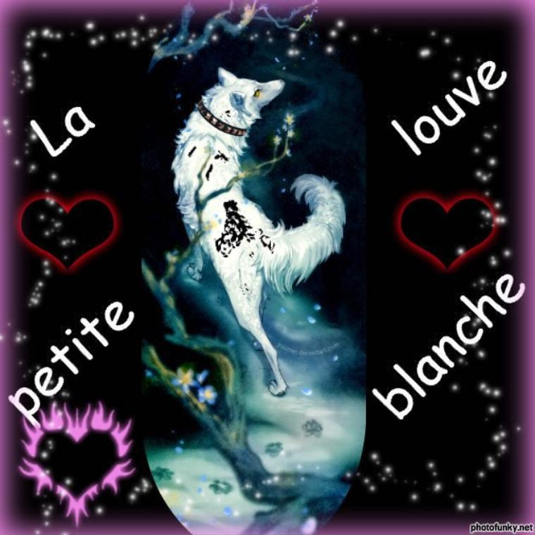 La petite louve blanche