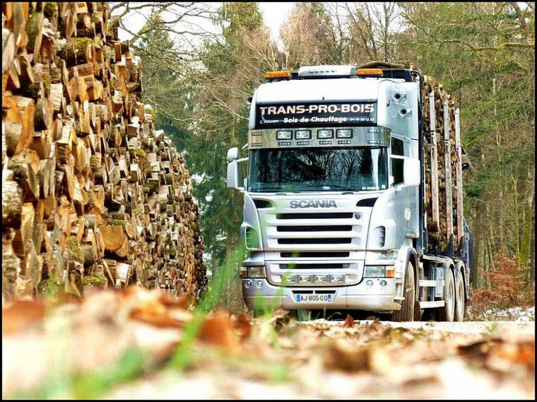 traansport pro bois