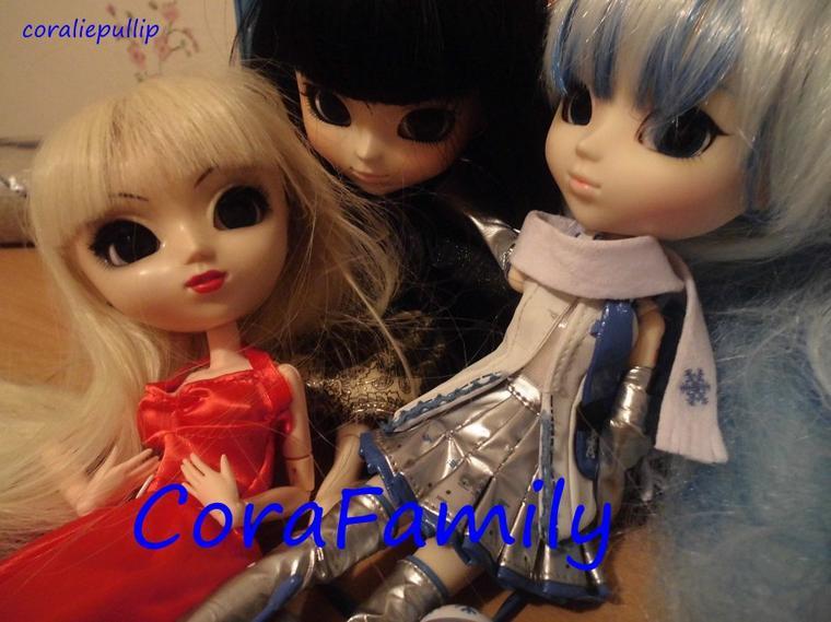 presentation de ma famille doll (Coco'Family)
