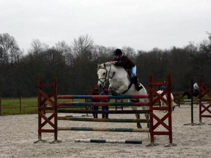 Estelle et Hermès a la puissance ils sautent 1,36 m !!!