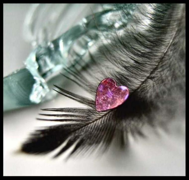 La plume écrit ce que ressent mon coeur ...