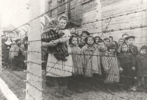Auschwitz Birkenau, il est important que vous lisiez