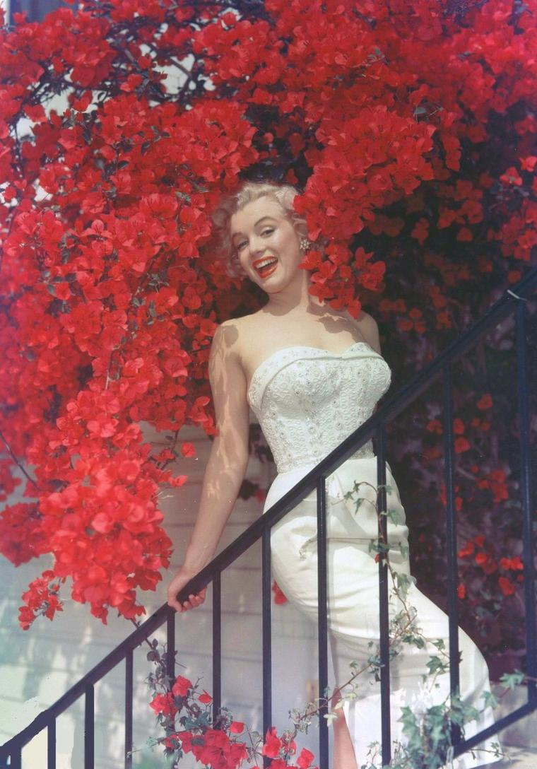 "1951 / by Don ORNITZ... Marilyn tourne alors ""Let's make it legal""."