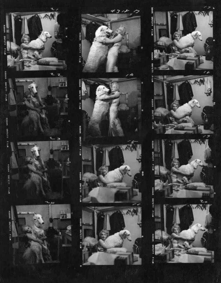 """1957 / by Richard AVEDON... Ou quand Marilyn """"joue"""" les Jean HARLOW... (coulisses de la session photos)."""