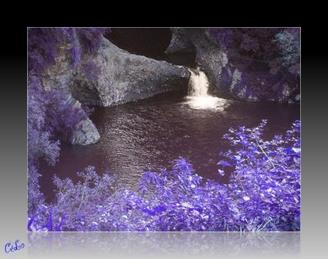 Bassin La paix à l'Ile de la Réunion