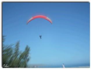 vol en parapente au dessus de Saint Leu