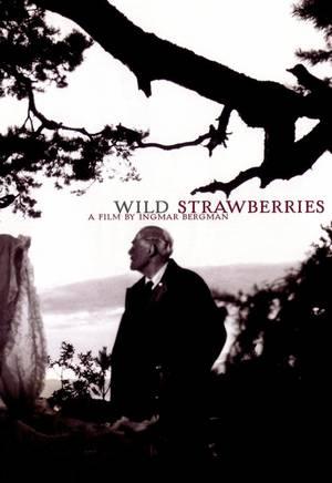 Les fraises sauvages