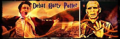 Débat HP : Le Wizard est t'il le dernier coffret?