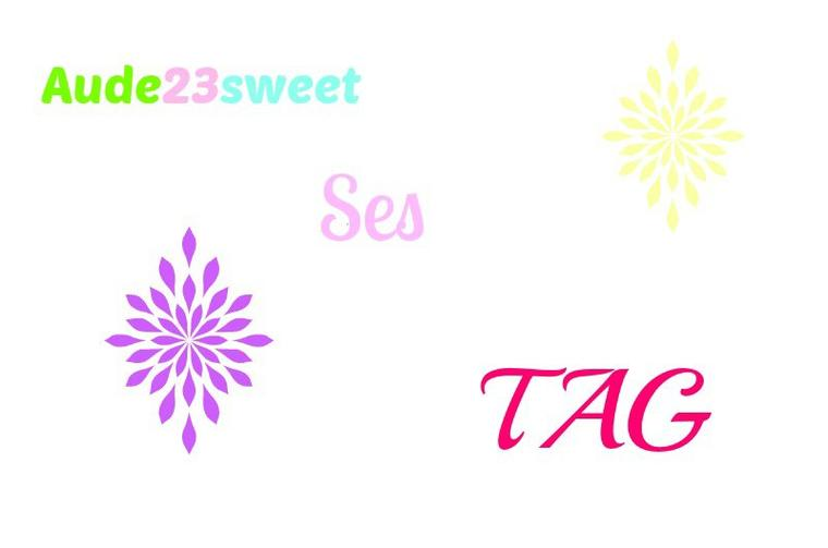 ♡ Tag 2 : Une youtueuse 1 situation ♡