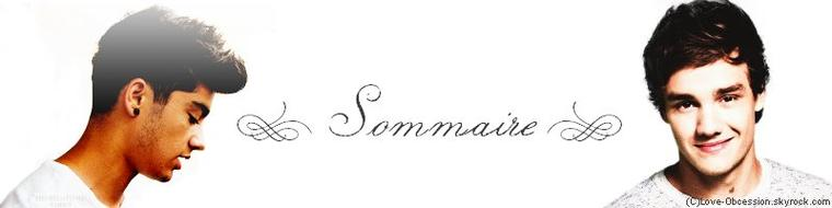 - Sommaire
