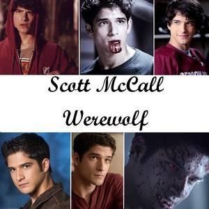 Spécial Teen Wolf ♥