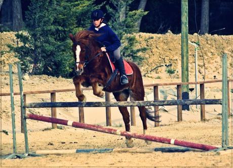 """""""Jette ton coeur par dessus l'obstacle, le cheval suivra"""""""