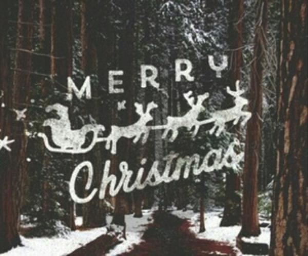 Joyeux Noël 2015 !!!!!!!!!! Christmas 2015