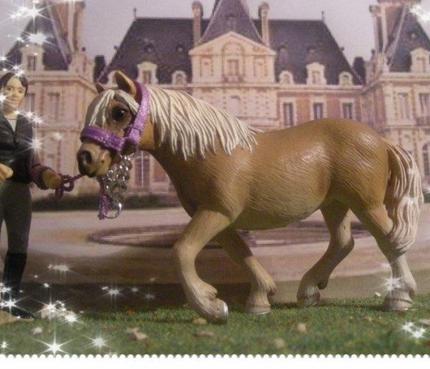 Mes chevaux 3