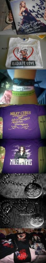 Photos des objets dérivés du Gypsy Heart Tour, en vente lors des concerts !!!