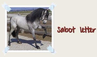 Sabot Letter ♥