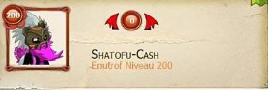 Shatofu is back :)