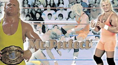 Bio de Mr. Perfect