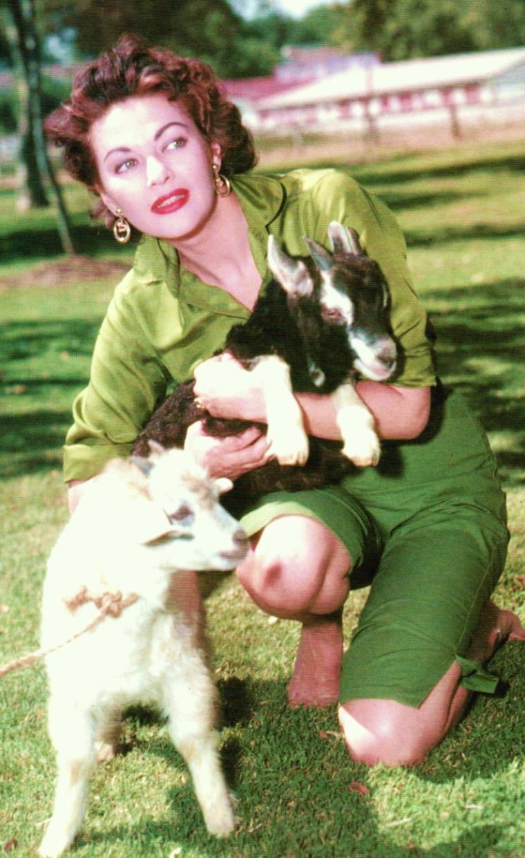Yvonne De CARLO, née Margaret Yvonne MIDDLETON, est une actrice d'origine canadienne naturalisée américaine, née le 1er septembre 1922 à Vancouver (Canada) et décédée le 8 janvier 2007 à Woodland Hills, Los Angeles (États-Unis).