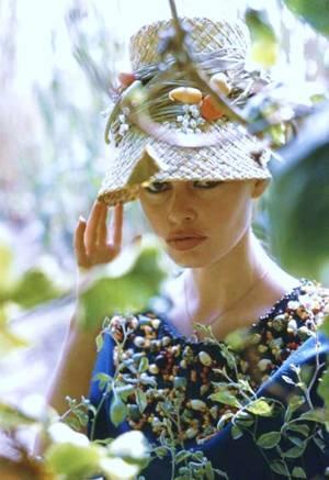 CITATION / « Si une femme veut une tiare de diamants, elle vous expliquera que ça lui fera économiser un chapeau. » de Jerôme K JERÔME / de haut en bas : Jacqueline BISSET / Brigitte BARDOT / Rita HAYWORTH / Suzy PARKER / Betty HUTTON / Gina LOLLOBRIGIDA / Rosalind RUSSELL / Debbie REYNOLDS