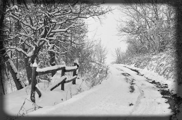 La neige :)
