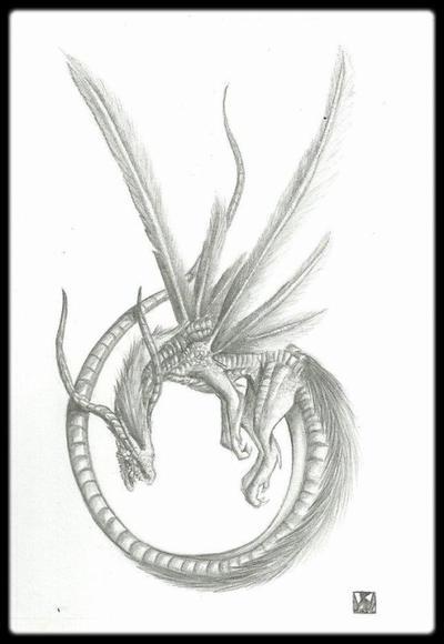 """""""Pterophorus pentadactylus"""""""