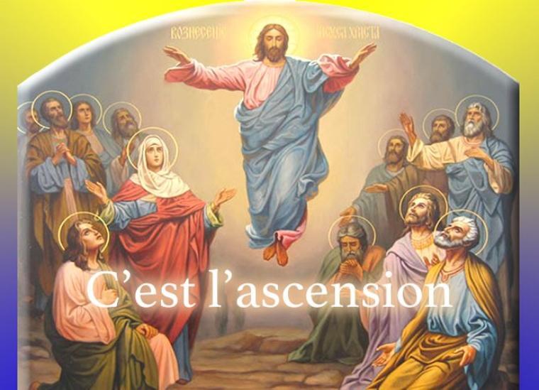 """En ce jour de l'Ascension, nous célébrons le Christ ressuscité qui apparaît une dernière fois à ses disciples. Le texte des Actes des Apôtres nous annonce qu'il leur confie une mission : """"Vous allez recevoir une force, celle de l'Esprit Saint qui viendra sur vous. Alors, vous serez mes témoins à Jérusalem, dans toute la Judée et la Samarie et jusqu'aux extrémités de la terre"""" (Actes 1. 9). Puis il disparaît à leur regard. C'est ainsi que l'Ascension ouvre le temps de l'absence. Jésus n'est plus visible. Pour les apôtres, c'est le commencement de la mission, c'est l'annonce de la bonne nouvelle à tous. Pour donner ce témoignage, ils auront besoin de la force de l'Esprit Saint. C'est important pour nous aujourd'hui. L'Ascension nous renvoie à notre mission sur la terre. En tant que chrétiens baptisés et confirmés, nous avons à témoigner de notre foi en Jésus ressuscité. Certains le font au péril de leur vie. Il ne se passe pas un jour sans qu'un chrétien ne soit persécuté. On veut les obliger à renier leur foi. Mais ils préfèrent mourir plutôt que de trahir le Christ."""