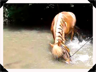 Aprem a la riviere avec le petit