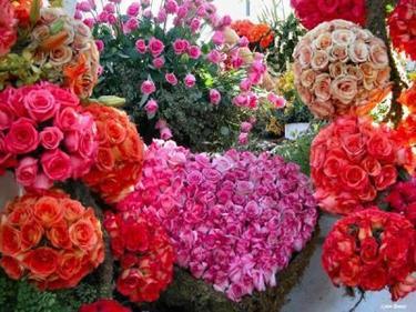 Un bon ami, comme de jolies fleurs