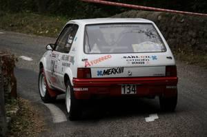 Rallye des Camisards 2013