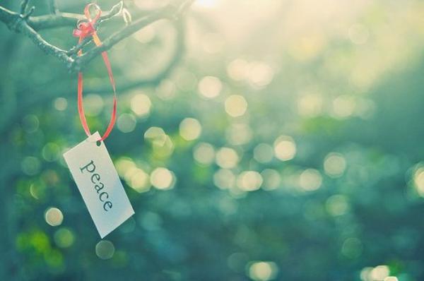« Usez et abusez des sourires. Pleurez, riez, ressentez plus que votre c½ur ne vous le permet. Aimez les gens comme si ils allaient mourir demain. Buvez, mangez, embrassez, enlacez. Savourez les mots, parlez trop. Et prenez trop de photos. Composez-vous des souvenirs inoubliables, parce que beaucoup de ceux que vous aimez aujourd'hui disparaîtront sans doute demain. »