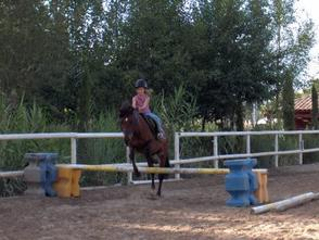 double pony and my ( l équitation ma pation )