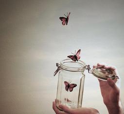 J'ai décidée de ne plus t'aimer, de ne plus te prêter attention, de me sentir de nouveau vivante, d'aimer à nouveau, mais cette fois ci trouver la bonne personne. Je me demande pourquoi je me sentais inférieure, parce qu'en vérité tu ne vaut pas mieux que moi, au contraire, tu es seulement comme tous les autres.