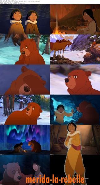 frére des ours