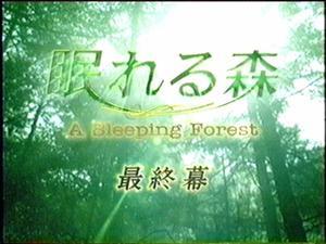 Drama : Japonais A Sleeping Forest 12 épisodes[Drame et Suspense]
