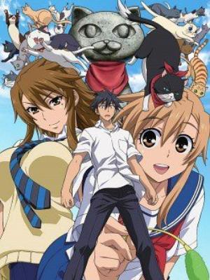Anime Nyan Koi! Genre : Seinen[Amitié, Romance, Comédie, Fantastique et Harem]