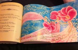 Rêves d'Orchidées  -> Cédric Janvier & Cathy Delanssay